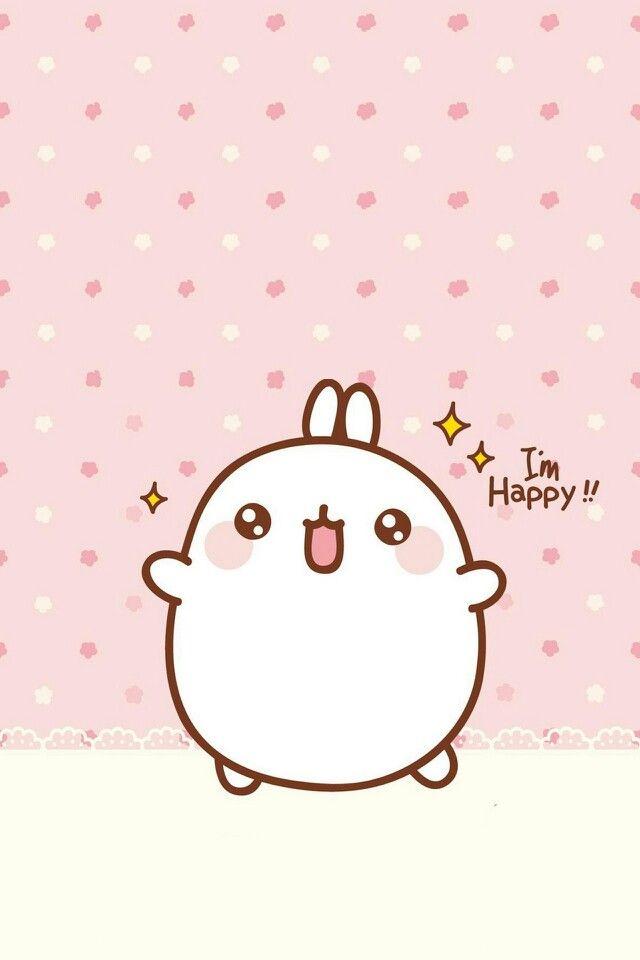 A Cute Fat Korean Bunny