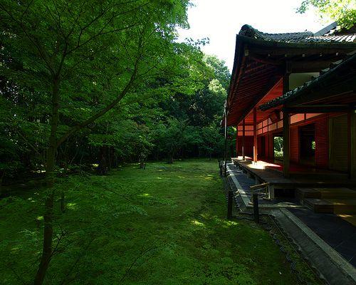 高桐院 大徳寺 / Koutou-in Daitoku-ji Temple