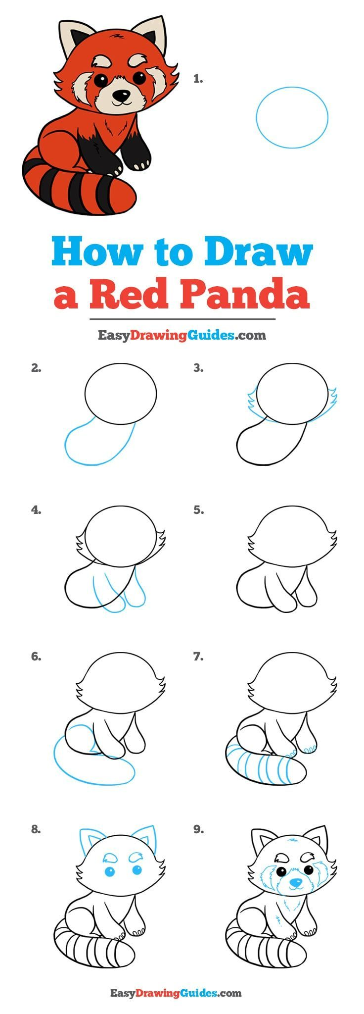 How To Draw A Red Panda Drawing Tutorials For Kids Drawing