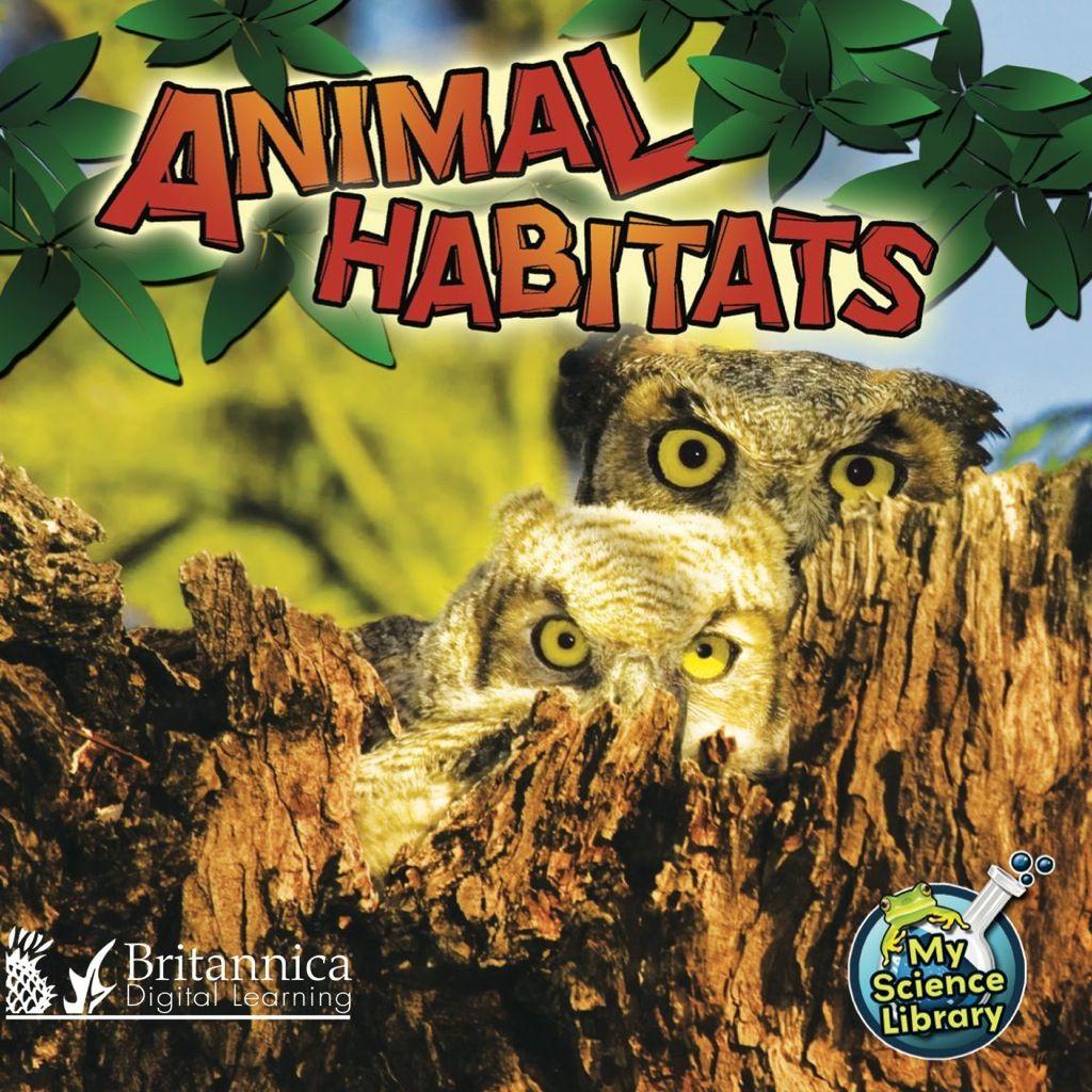 Animal Habitats Ebook