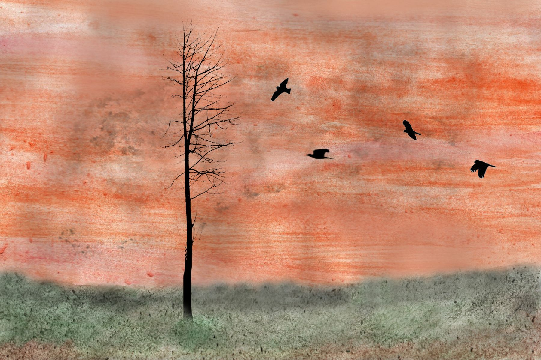 painted backgrounds with photographed silhouettes of trees and birds. Inspired by Jeff League