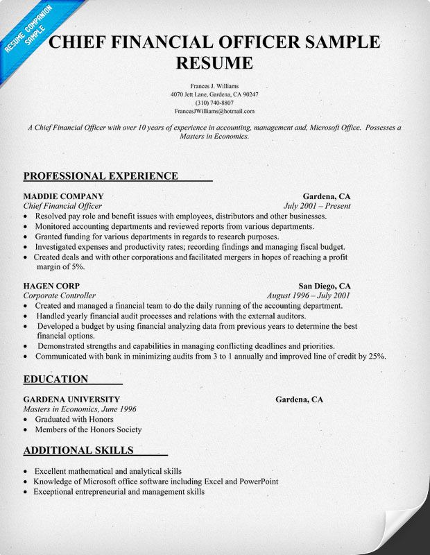 Chief Financial Officer Resume Sample Carol Sand JOB Resume - financial resume examples