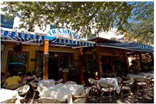 Tramanti S Delray Beach Classic Italian Dishes Favorite