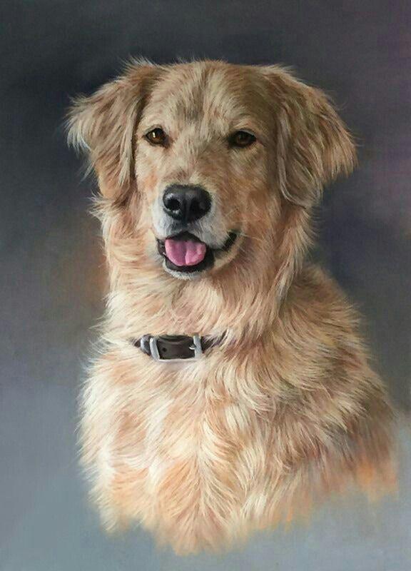 Firulais Retratos De Perros Arte Del Perro Pintura Perro