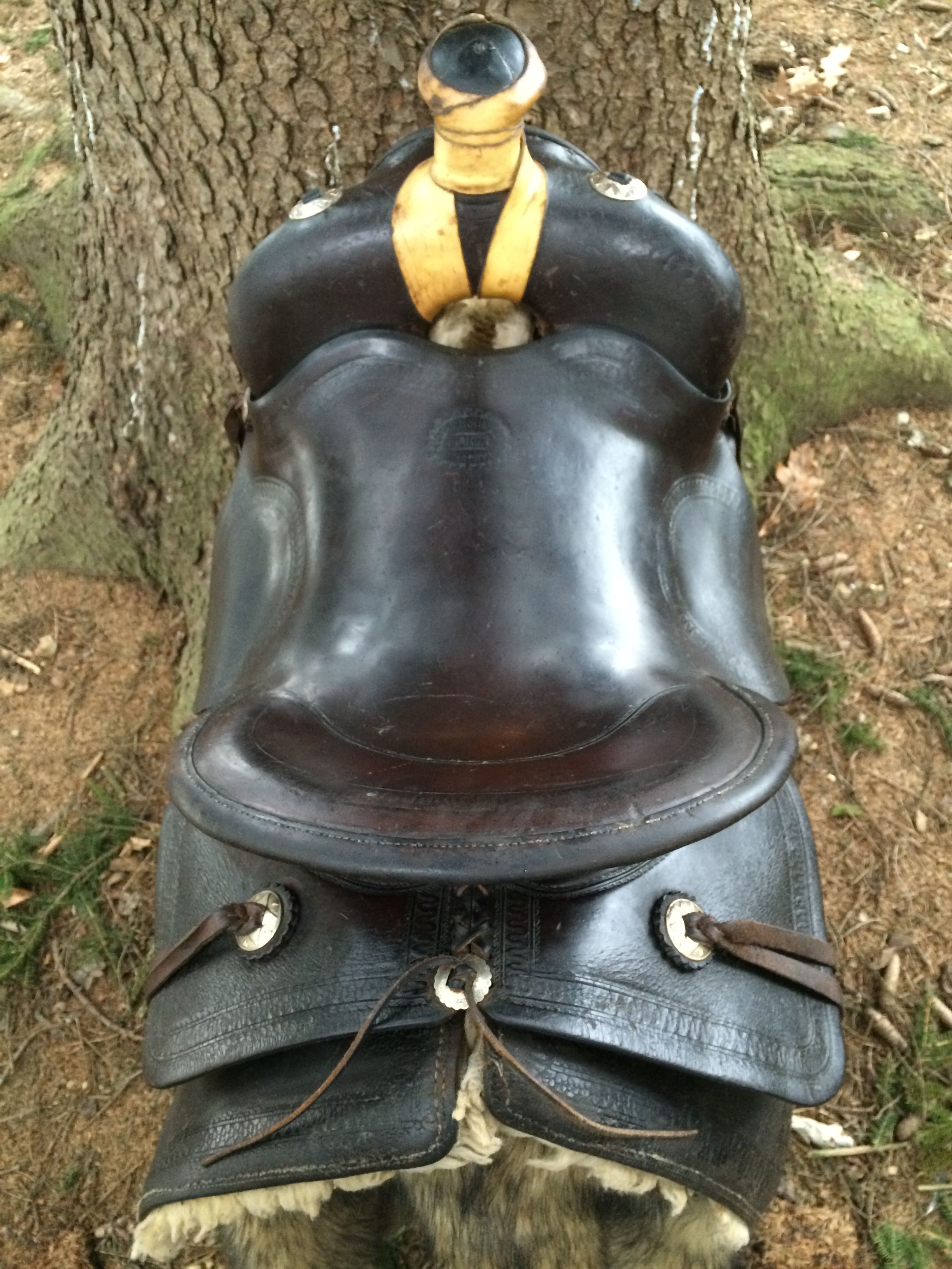 SOLD! - www facebook/vintage saddles Vintage Shipley saddle