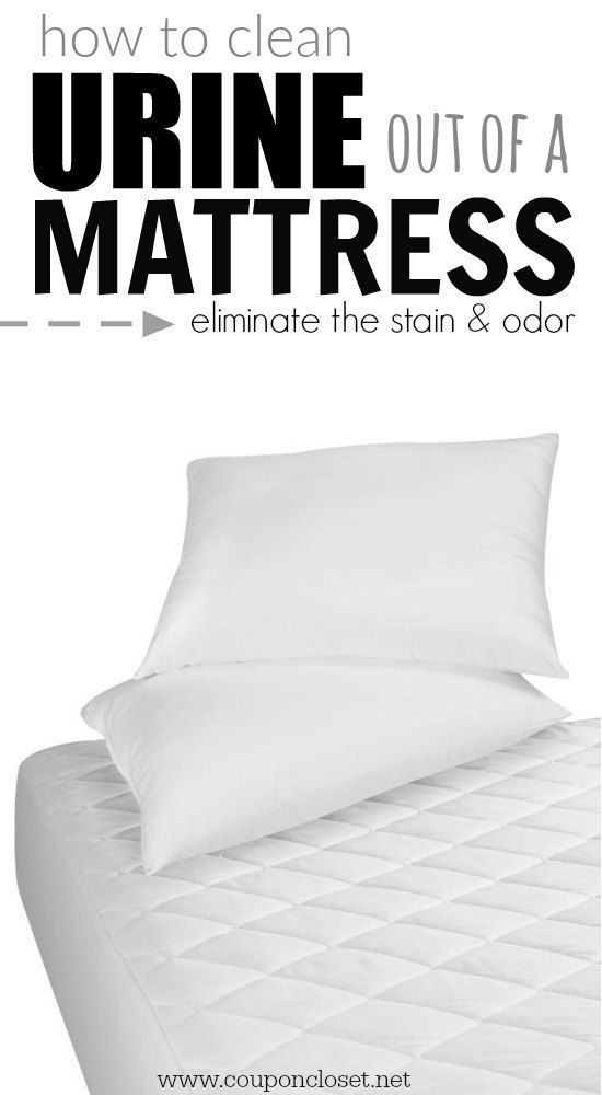 Ow To Get Pee Out Of Mattress How To Get Urine Out Of