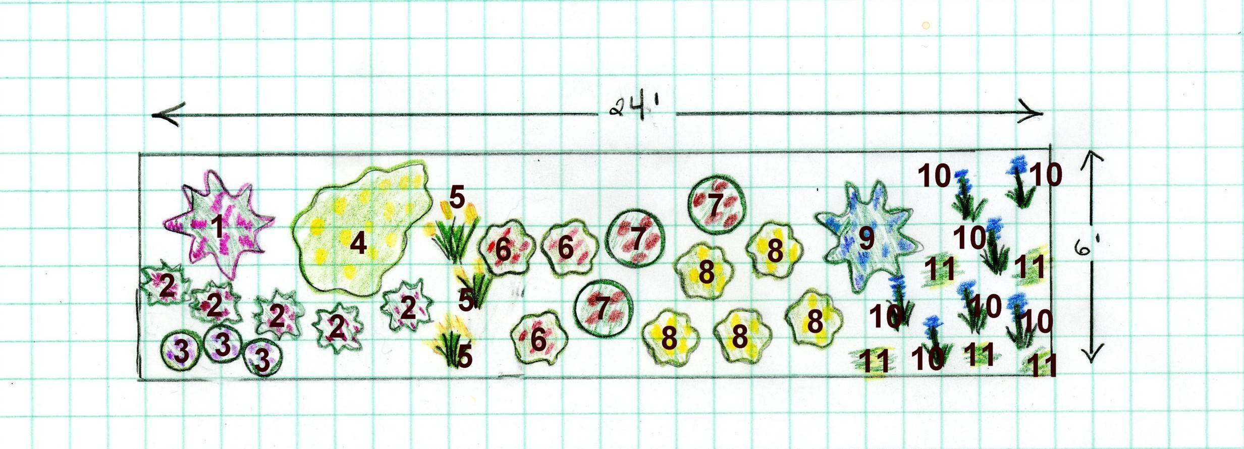Best 25+ Sun Perrenials Ideas On Pinterest | Perennial Gardens, Full Sun  Landscaping And Outdoor Flowers