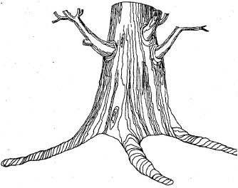 У лукоморья дуб зеленый. Квилт | Зеленый и Ремесла