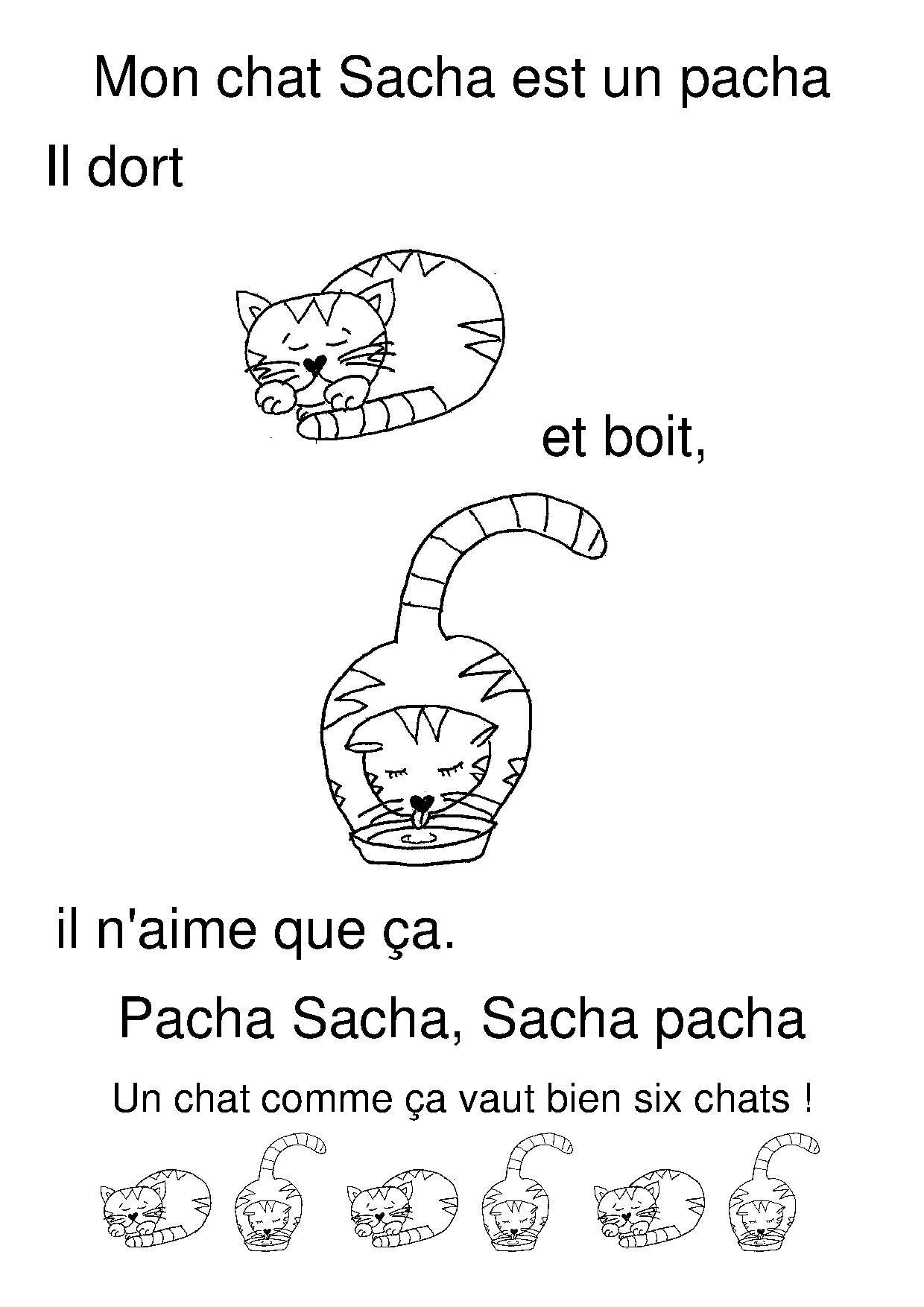 Mon Chat Sacha Pinterest
