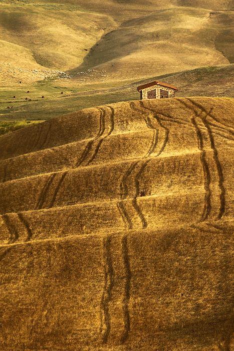 Tuscany Lines  Michal Vitásek