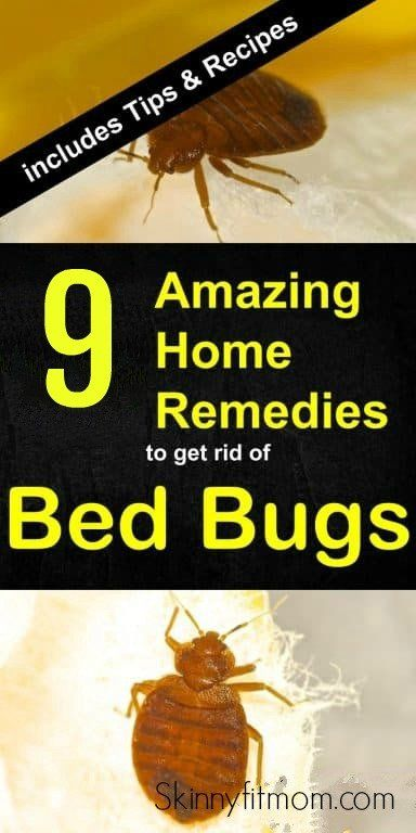 9 Best Home Remedies To Get Rid Of Bed Bugs Permanently With