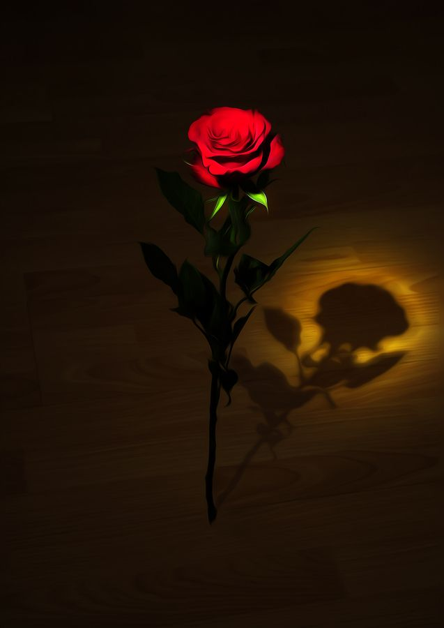One Red Rose By Svetlana Sewell Via 500px Red Roses Red Rose Flower Rose Pic