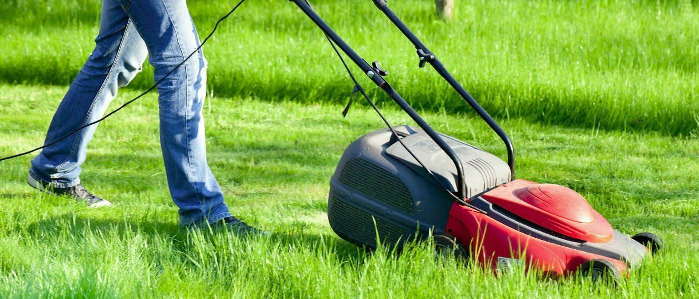 Mowing Wet Grass Here Are The Top 20 Tips To Know