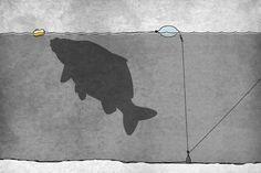 MAXIMUMCATCH Premier Fliegenrute und Avid Rolle Combo komplete 9 Fliegenfischen Outfit mit Angelausr/üstung