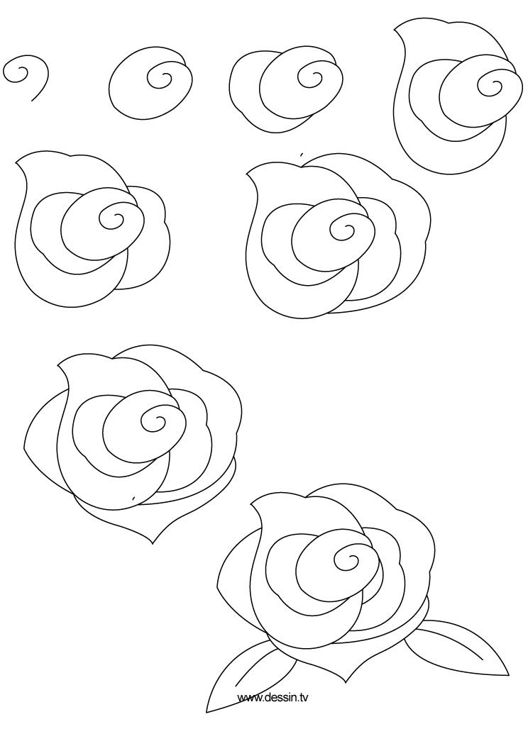 How to draw flowers learn how to draw a rose with simple for How to draw a basic flower