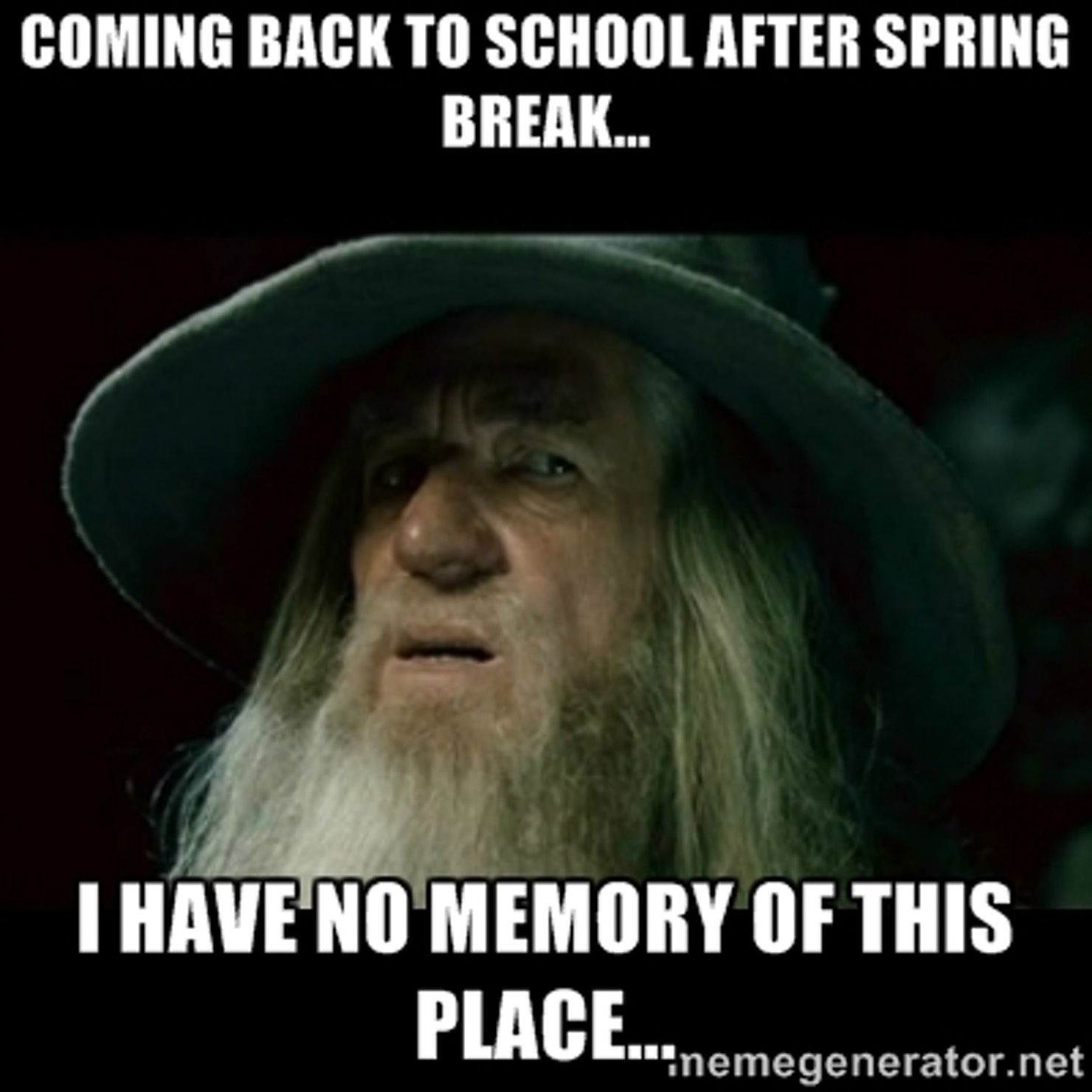 going back to school after spring break meme