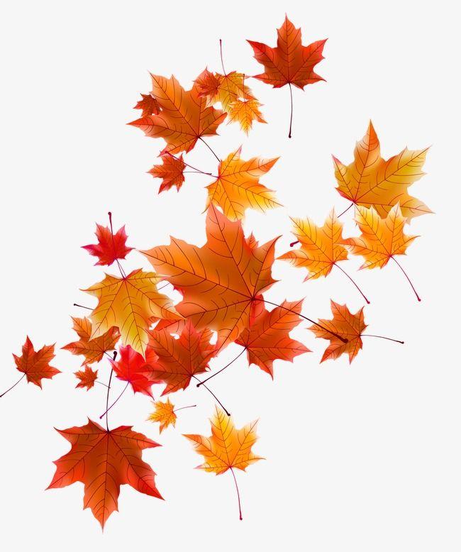 картинка для фона осень на прозрачном фоне сам