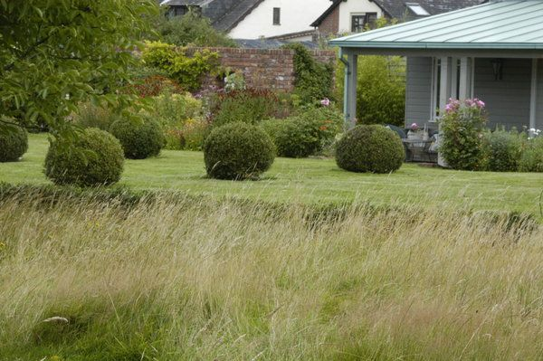 Box balls & lawn