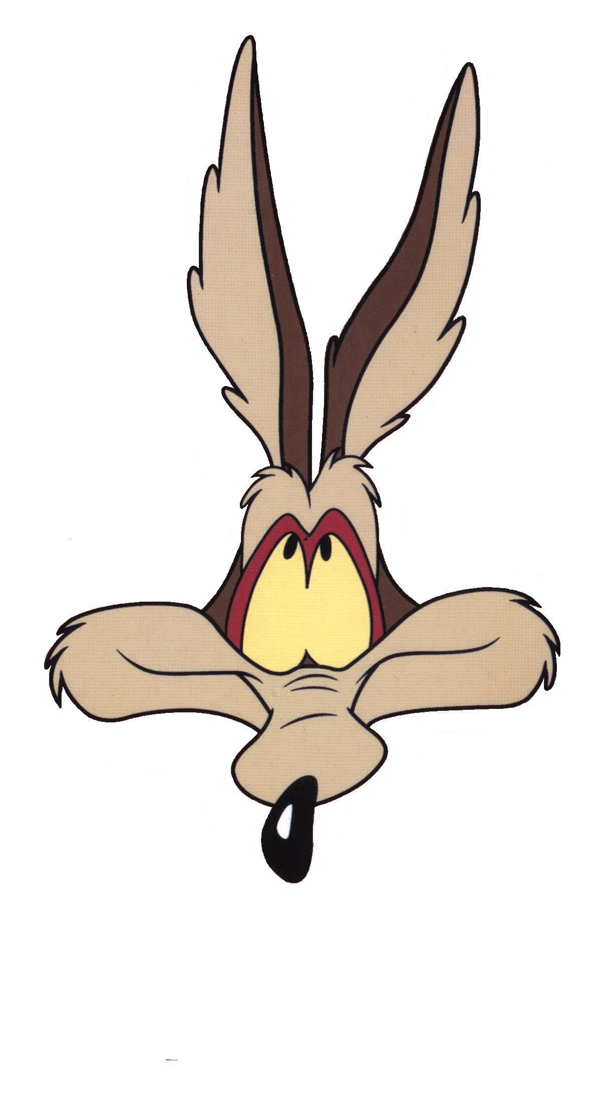 wile e coyote | looney tunes: wile e coyote | pinterest | cartoon