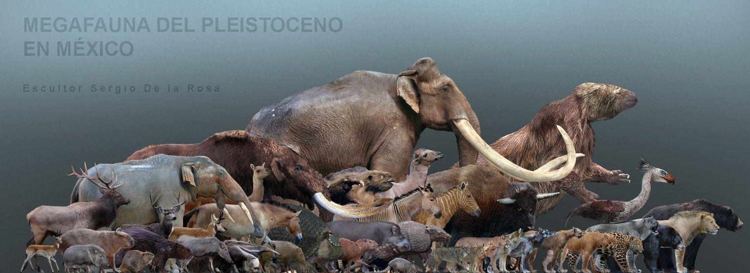 Pleistoceno En Mexico By Serchio25 On Deviantart Extinct Animals Megafauna Prehistoric Animals