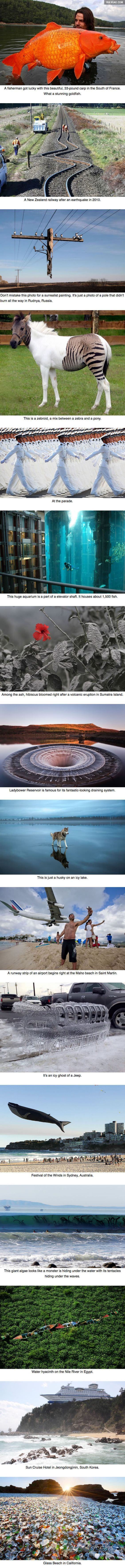 15 Photos That Prove Reality Is Better Than Photoshop