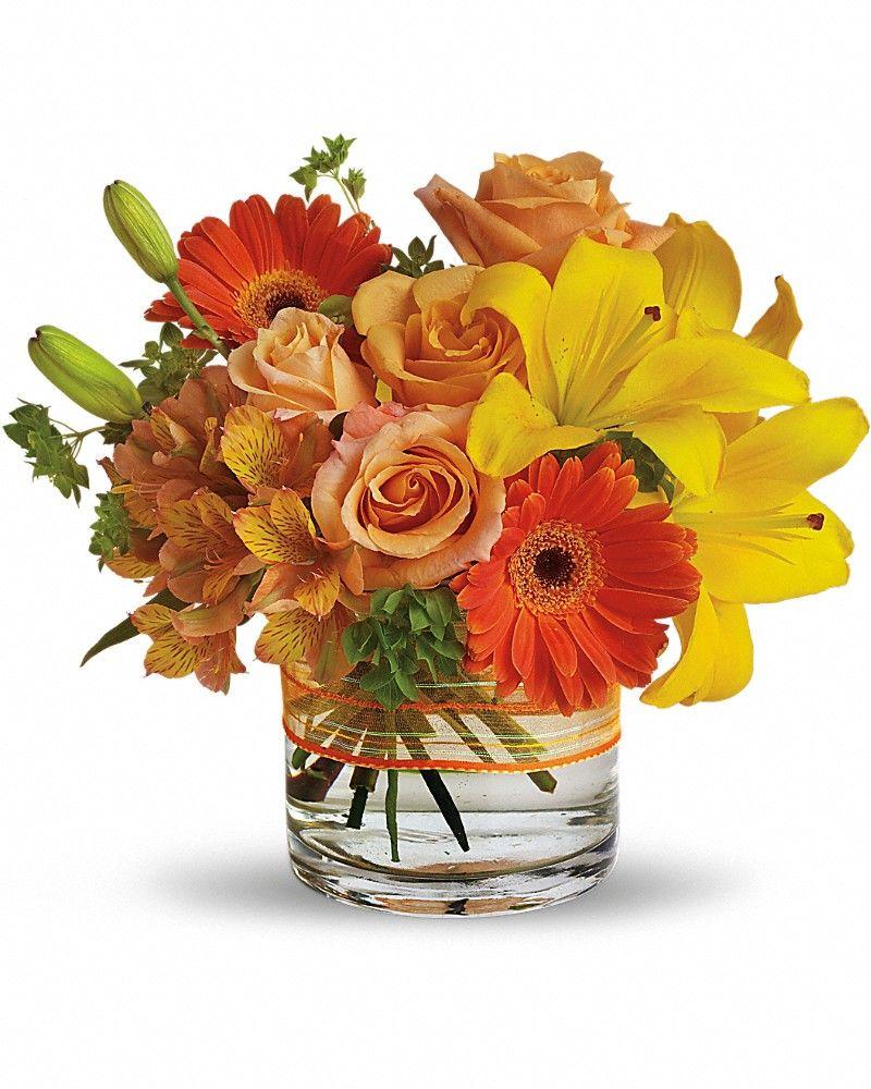 Sunny siesta sunnies flower and flower arrangements sunny siesta send flowers to calgary izmirmasajfo
