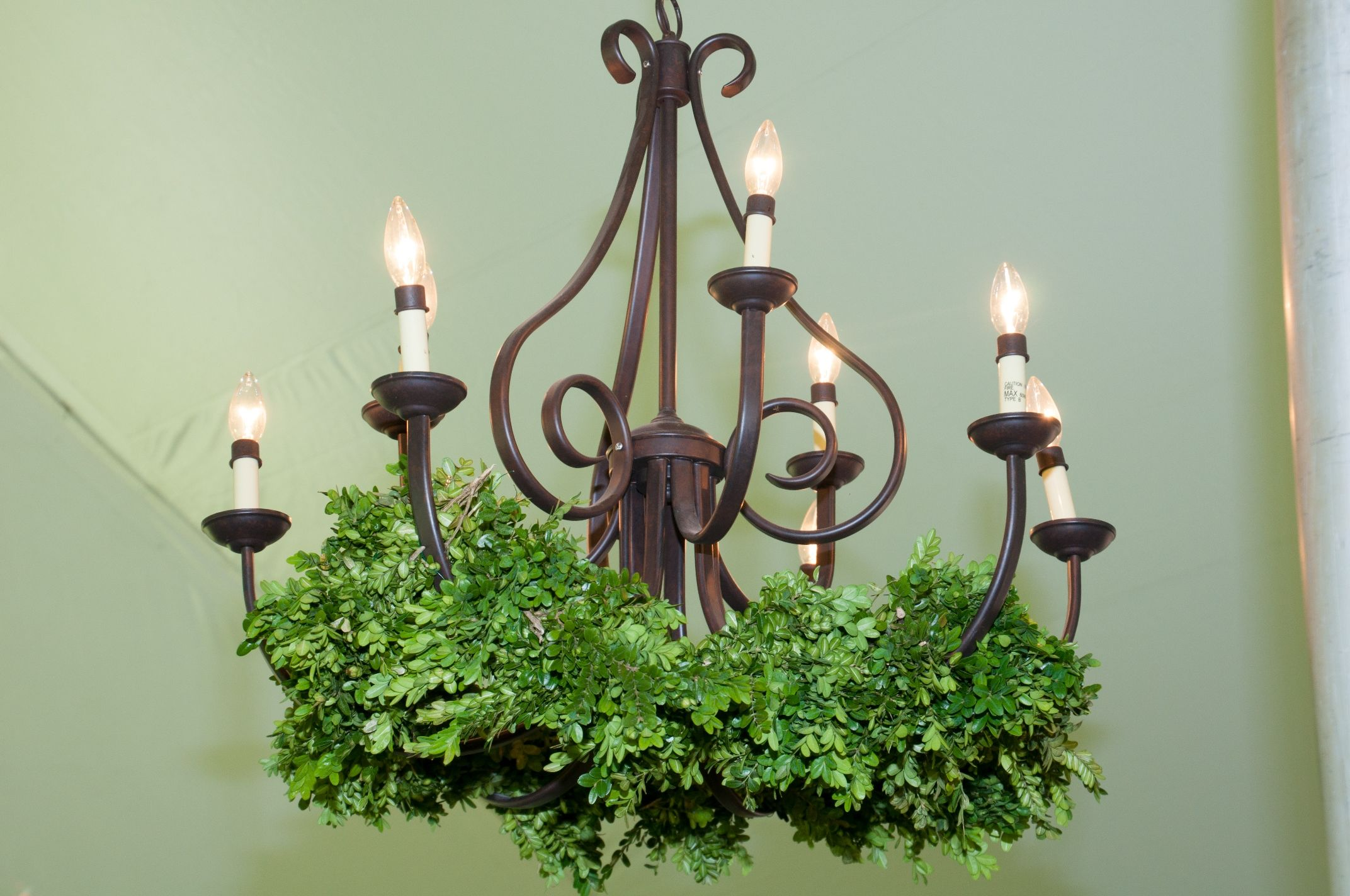 9light chandelier with greenery canopy rentals tent