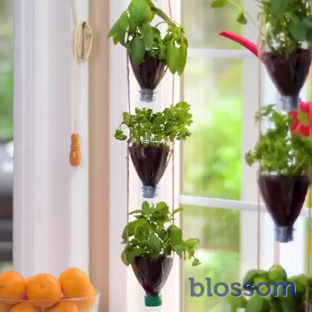 Photo of Smart tricks for growing plants