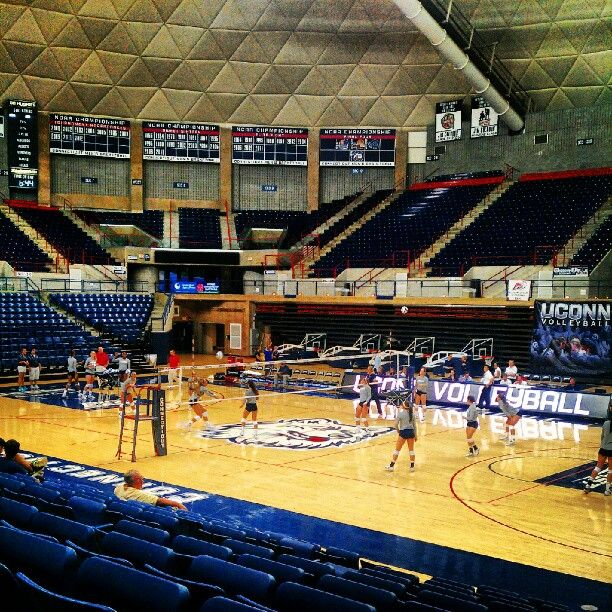 Uconn Women S Volleyball Game Women Volleyball Volleyball Volleyball Games