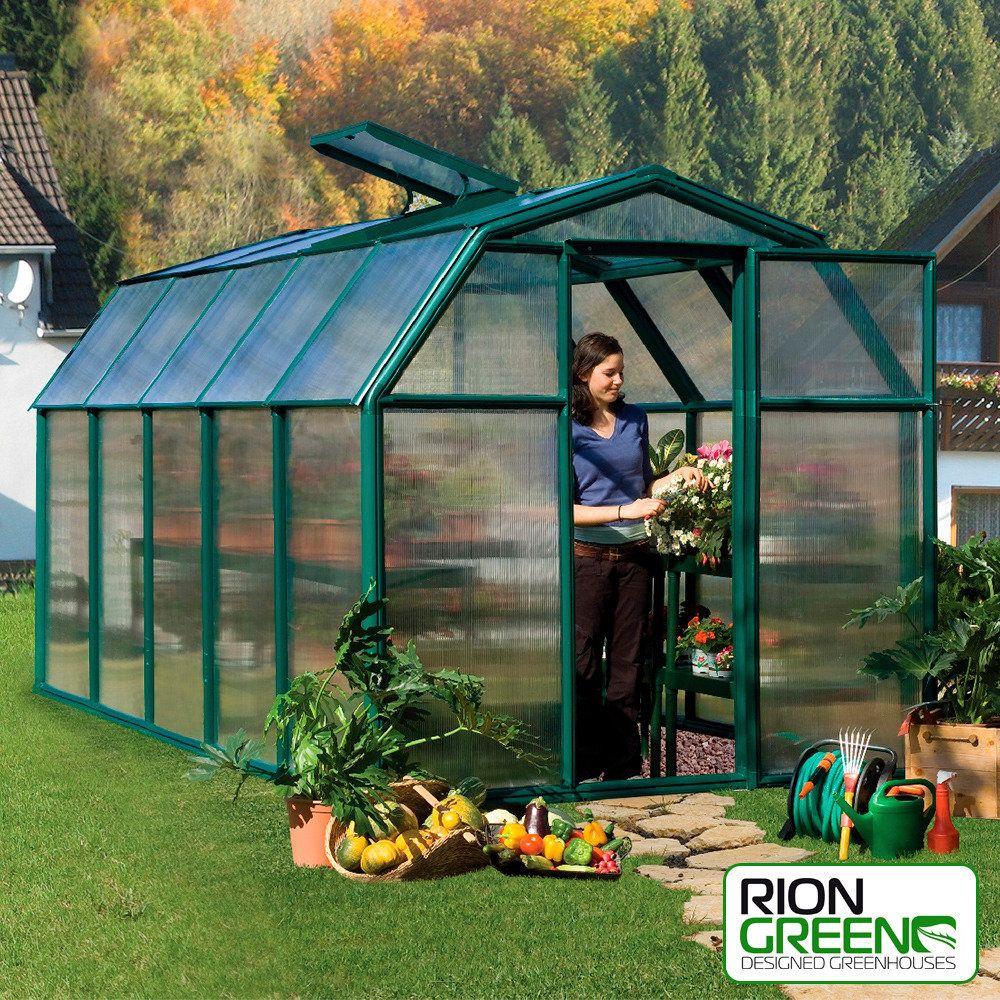 gew chshaus first class 35 inkl fundamentrahmen succulents cacti pinterest cacti. Black Bedroom Furniture Sets. Home Design Ideas
