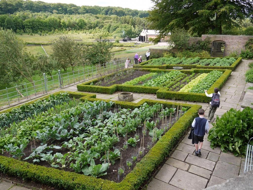 Gardening For Beginners Timeline Allotmentgardeningforbeginners Garden For Beginners Timeline Garden For In 2020 Vegetable Garden Design Garden Layout Garden Design