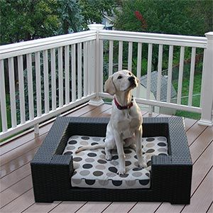 Little Spot Outdoor Dog Furniture By Sirio For Smaller Dogs