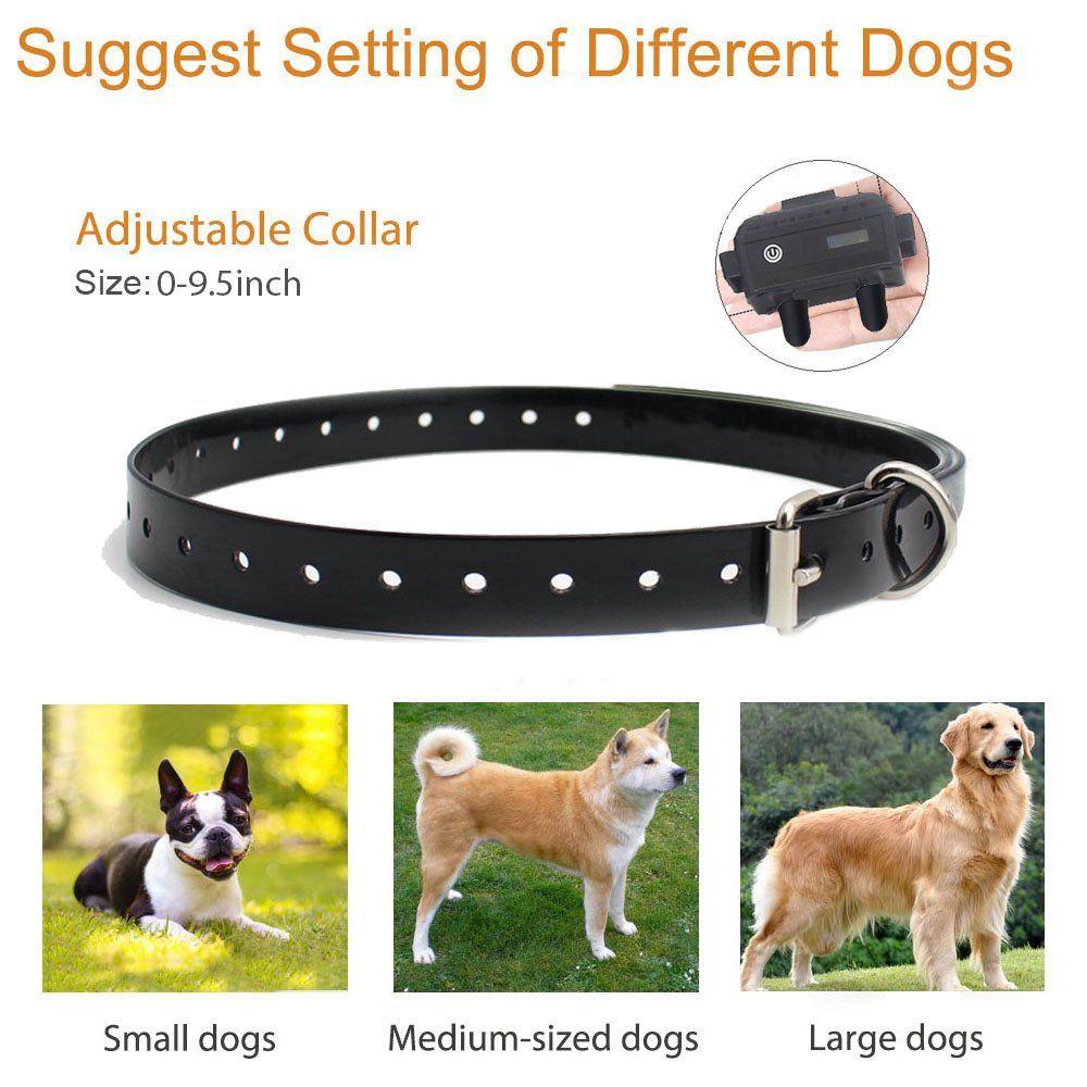 Dog Training Collar With Remote Waterproof Shock Collar 800 Yards