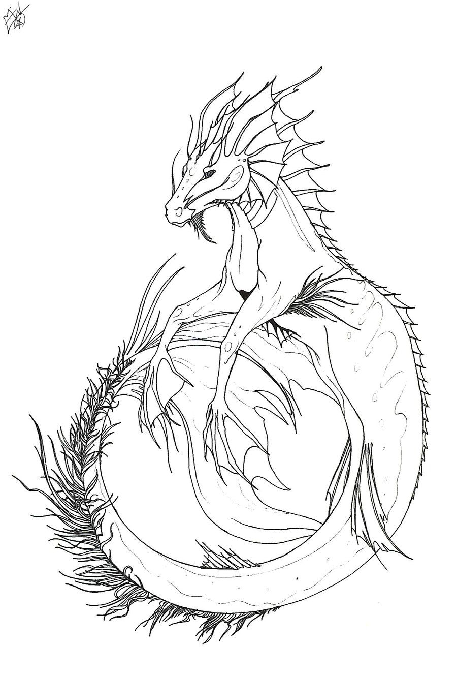 Tropical Hippocampus By Dark Wolfess09 On Deviantart Dragon Coloring Page Dragon Sketch Drawings