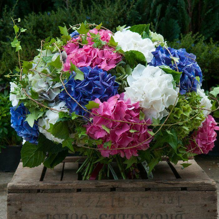 Heavenly Hydrangea Flowers Delivered Fresh Flowers Arrangements Flower Delivery