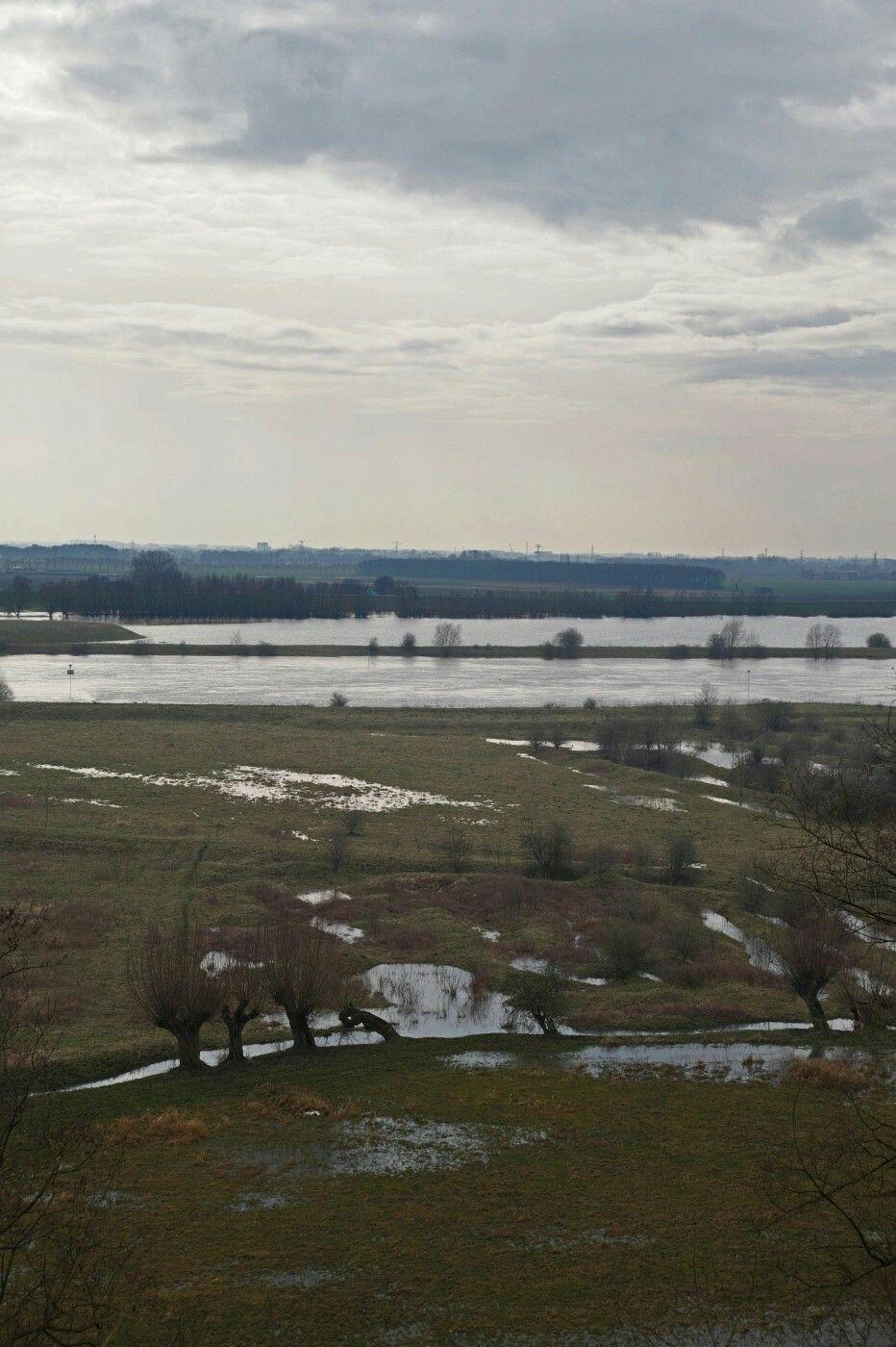 De Rijn bij Wageningen