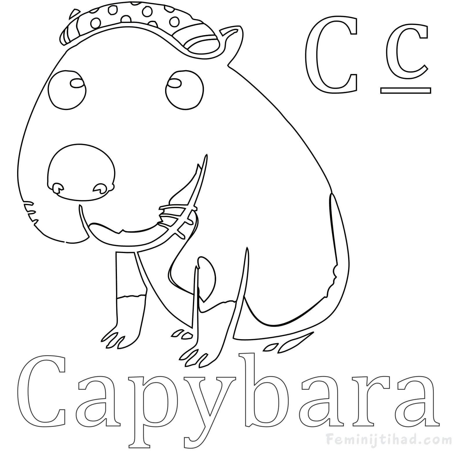 Easy Capybara Coloring Pages Free Coloring Sheets Coloring Pages Animal Coloring Pages Capybara