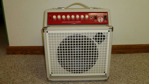 swr strawberry blonde acoustic guitar amplifier w cover near mint acoustic guitar amps. Black Bedroom Furniture Sets. Home Design Ideas