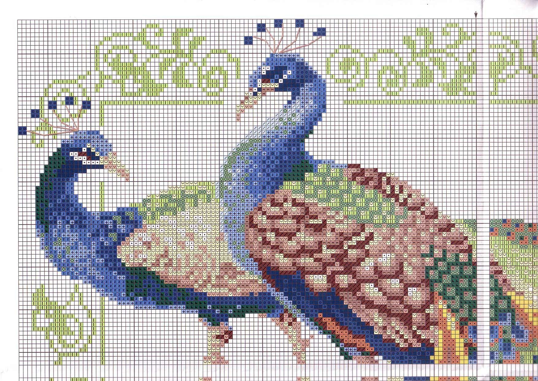 Peacock pavos reales pinterest cross stitch peacocks and stitch