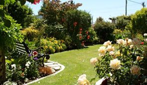 We offer ongoing a complete Garden maintenance Service throughout the Cairns Region. http://www.mrpm.net.au/services/garden-maintenance-cairns/