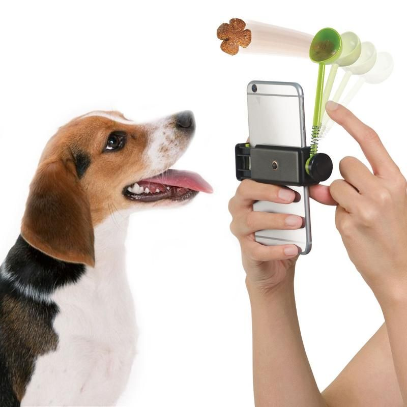 2018 Pet Parade Pet Ture Perfect Pic Treat Launcher Dog Design