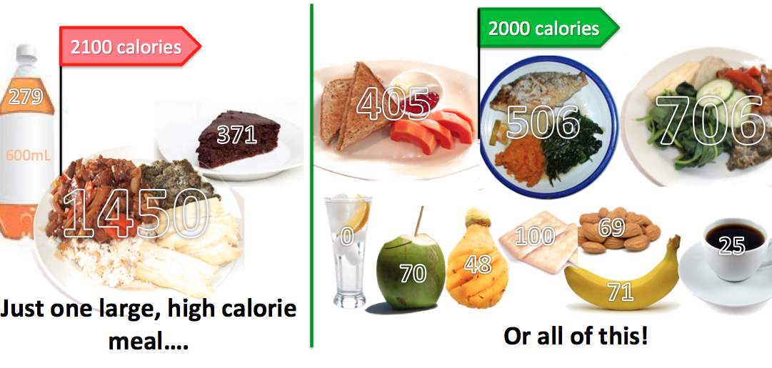 what does 2000 calories look like - Google Search 2000 Calories A Day,  Healthy Eating