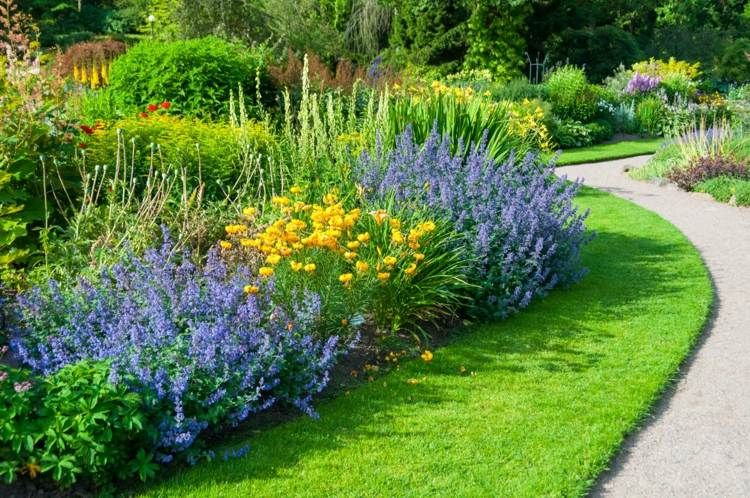 plante plein soleil 12 esp ces fleurs jolies et. Black Bedroom Furniture Sets. Home Design Ideas
