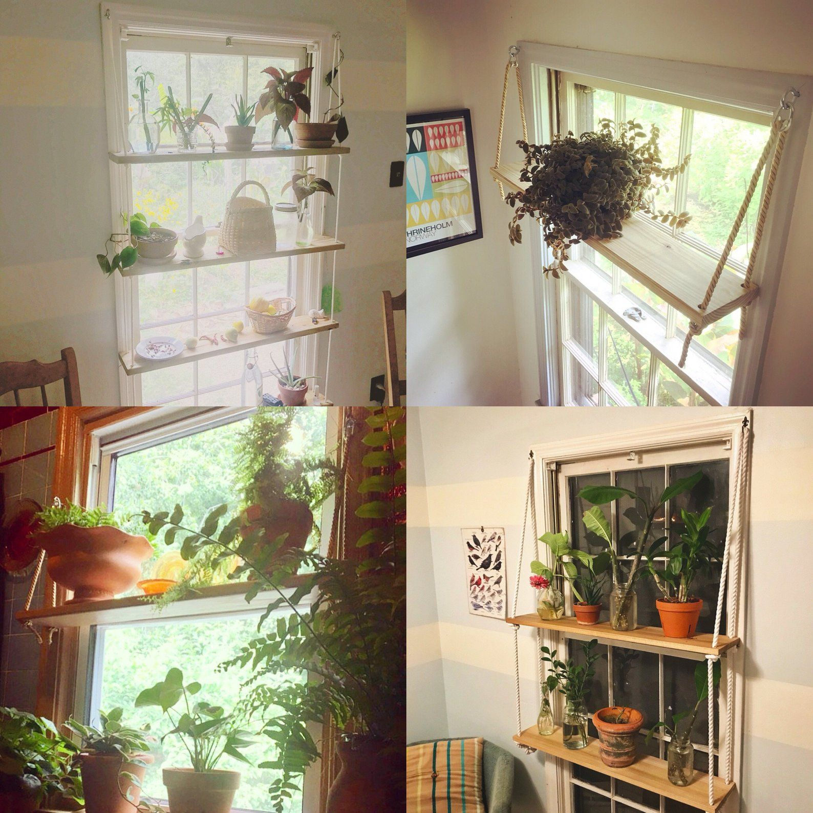 d i y hanging shelf guide in 2020 hanging shelves diy on incredible kitchen designs that will make you need to repeat yours id=30273