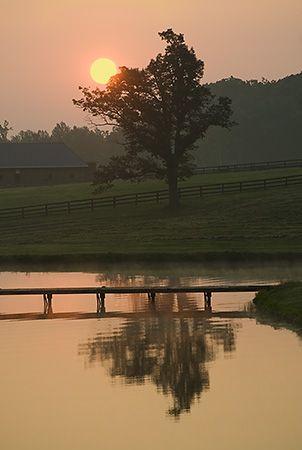 Early Sun in Stanardsville, VA