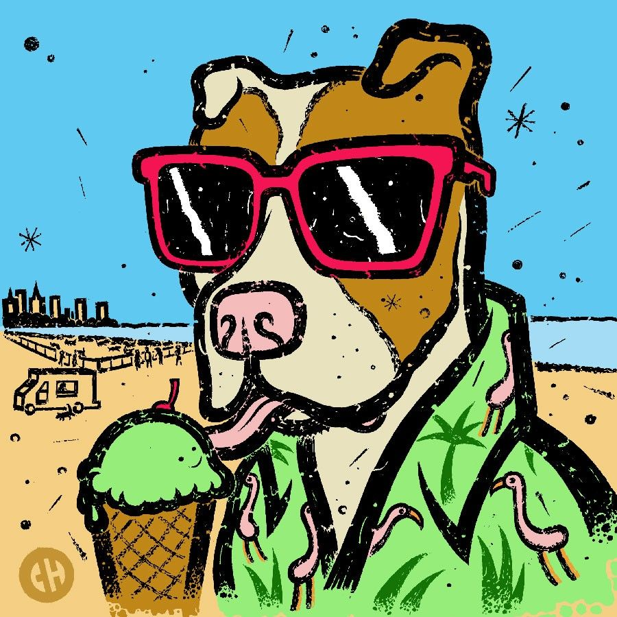 The summer guide for Chicago dog owners Chicago dog, Dog