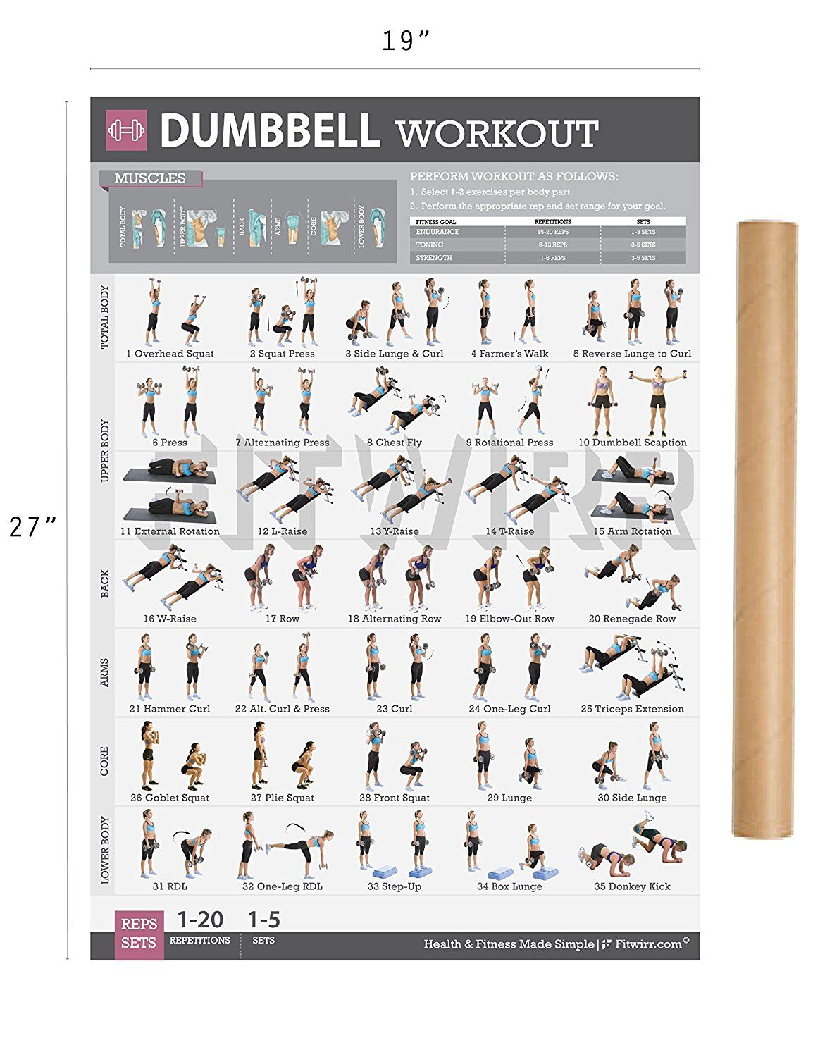 Dumbbell exercises workout poster now laminated strength dumbbell exercises workout poster now laminated strength training workout chart home gym weight nvjuhfo Choice Image
