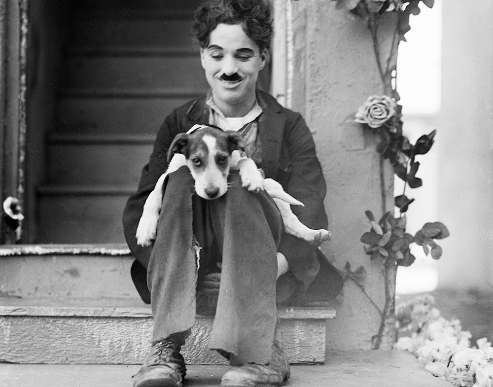 Charlie Chaplin. A Dog's Life (1918): Charlie relaxes with a canine cast member on his knees in 2020   Charlie chaplin. Dog life. Chaplin