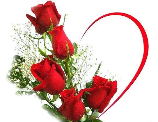 خلفيات حب قلوب ورد ورود للكمبيوتر صور رومانسية للاب توب مذهلة Love Hearts Red Roses Wallpaper Love Rose Flower Beautiful Love Flowers