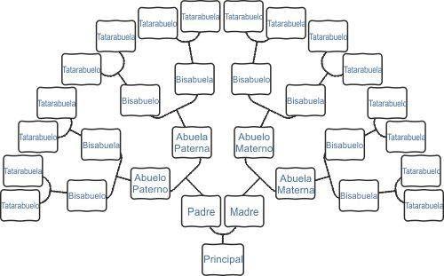 C mo se hace un rbol geneal gico 2 genealogia for Como se desarrolla un arbol